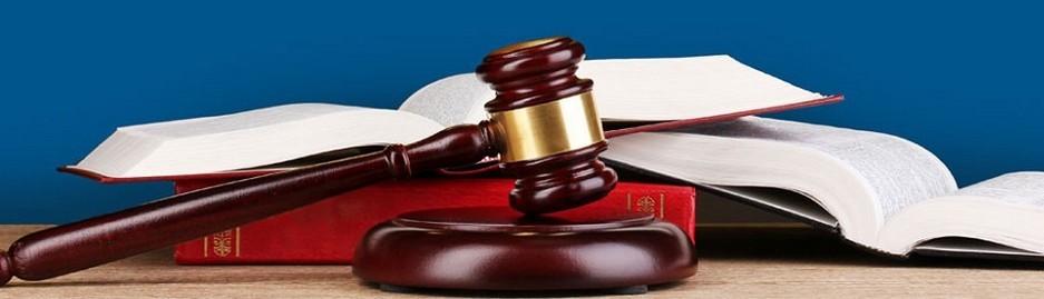 Il-Decreto-Legislativo-N.231